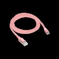 2DK18RA-AlumiCableType-C-Mockup.png